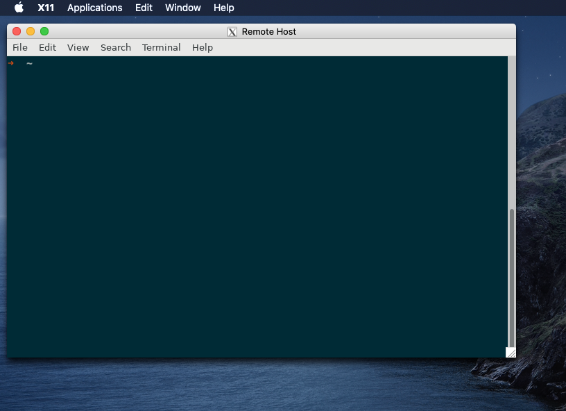 A Remote Instance of GNOME Terminal Viewed on macOS Catalina